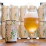 Amazon限定ノンアルビール!カチプラNON-ALCOHOL BEER TASTE DRINK(ノンアルコールビアテイストドリンク)レビュー
